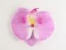 """Цветок """"Орхидея"""" на заколке."""
