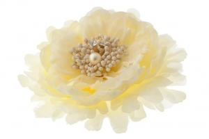 """Брошь-заколка """"Пион"""" кремового цвета.Очень красивый и пышный цветок с сердцевиной. Сам цветок на заколке и булавке, что очень удобно, можно носить на голове, а можно и на шапочке и повязке, а так же украсить любой наряд.Диаметр цветка 13 см."""