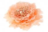 """Брошь-заколка """"Пион"""" персикового цвета."""