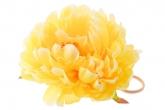 """Большой цветок """"Пион"""" желтого цвета на резинке."""