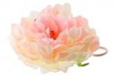 """Большой цветок """"Пион"""" розово-кремового цвета на резинке."""