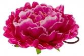 """Большой цветок """"Пион"""" цвета фуксии с розовым на резинке."""